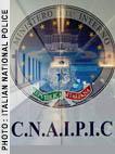 CNAIPIC emblem