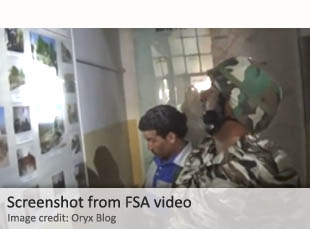 Screenshot from FSA video
