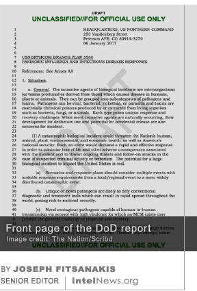 DoD Pandemic report
